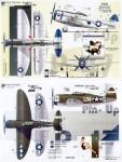 1-48-Pin-Up-Thunderbolts-2-Republic-P-47D-Thunderbolt-razorback