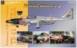 1-48-TS-11-Polish-Gliders-2