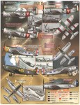 1-48-Juicy-Jugs-P-47-Bubble-Tops-from-Central-and-South-American-Air-Forces-
