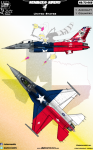 1-48-Venimous-Vipers-4-USAF-F-16C-Lone-Star-State-decoration