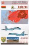 1-32-Belarusian-Flankers