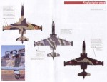 1-48-Post-Soviet-Air-Forces-Armenia-Su-25-1992-markings