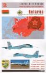 1-48-Belarusian-Flankers