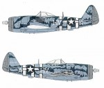 1-48-P-47D-bubble-1-226418-HV-A-Lt-Col-Francis-Gabreski-61FS-56FG