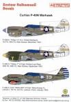 1-48-P-40N-Warhawks-3
