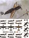 1-48-P-40F-L-Allied