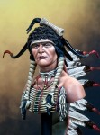 200mm-Sioux-Warrior