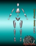 54mm-Anatomy-figure-54mm