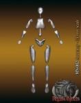 75mm-Anatomy-figure-75mm