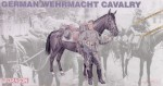 1-16-German-Wehrmacht-with-horse