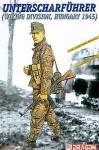 1-16-German-Untercharfuhrer-5-SS-Pz-Div-Wiking