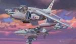 1-144-Harrier-GR-7-+-Harrier-GR-9