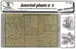 1-35-Assorted-Plants-2