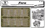 1-35-Fern