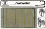 1-35-Palm-Leaves