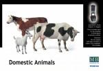 1-35-Domestic-animals