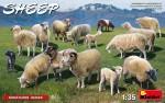 1-35-Sheep-15-pcs-