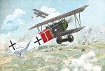1-48-Fokker-D-VII-Alb-late