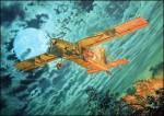 1-48-Fairchild-AU-23A-Peacemaker