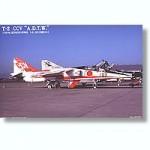 1-144-JASDF-T-2-CCV-3pcs