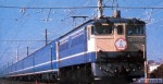 1-80-HO-EF-65-Blue-Train-Sakura