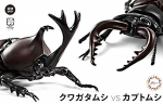 Living-Creature-Series-Stag-Beetle-vs-Japanese-Rhinoceros-Beetle-Duel-Set