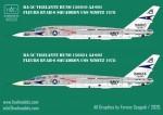1-48-Decal-RA-5C-Vigilante-USS-Nimitz-part-3