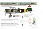 1-48-Fiat-CR-42-Royal-Hungarian-AF-Part-2
