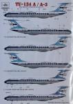 1-72-Tu-134A-A-3-3x-camo