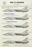 1-72-MiG-31-BM-BSM-5x-camo