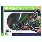 4D-Vision-Scorpion-Anatomy-Model