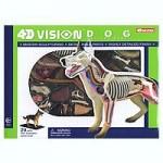 4D-Vision-Dog-Anatomy-Model