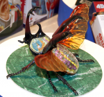 4D-Vision-Rhinoceros-Beetle-Anatomy-Model