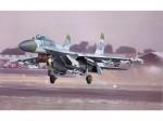 1-32-SOV-SUKHOI-SU-27-FLANKER-B-FTR