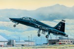 1-48-US-T-38A-Talon