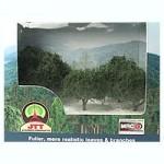 Walnut-Trees-Dark-Green-4pcs