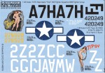 1-48-U-S-Army-P-47-Thunderbolt-Fran-and-Tipsy