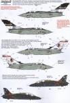 1-48-RAF-Anniversary-Update-2011-12-4