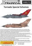 1-48-Panavia-Tornado-Special-Schemes-3
