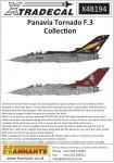 1-48-Panavia-Tornado-F-3-Part-1-9