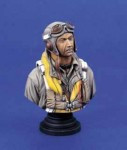 1-200-USAAF-Fighter-Pilot-BUST