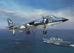 1-48-Royal-Navy-Sea-Harrier-FRS1