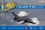 1-48-F-16A-BLOCK-20-MLU-TIGER-MEET-2009