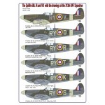 1-48-The-Spitfire-Mk-IA-and-VB-decals-with-the-drawings-of-the-313th-RAF-Squadron