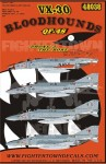 1-48-QF-4S-Phantoms-VX-30-Bloodhounds-4
