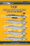 1-48-Boeing-F-A-18F-VFA-32-Swordsmen