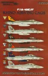 1-48-Boeing-F-A-18E-F-Rhino-CAGS-2013-is-seeing-some-great-CAG-jets-and-milestones-