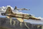 1-72-F-5E-Tiger-II-Re-edition