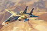 1-48-Persian-Cat-F-14A-TomCat-IRIAF