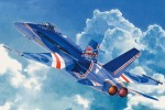 1-48-RAAF-F-A-18C
